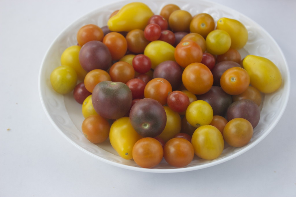 Bright & Beautiful Cherry Tomatoes